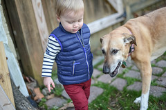 best buds (whateyesee13) Tags: peyton peytonjames backyard home fun child son boy kid winter nikon nikond750 50mm 50mmf14 nikkor50mmf14 dog buddy