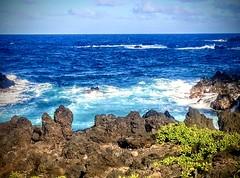 Seaside Serenity (wjaachau) Tags: tranquility serenity seascape vacation oceanlife beachlife sailing fishing maui hawaii suntan summer sunbathing sunshine funsurfing waves ocean beach coastal swimming seashells seashore sea