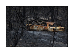 Old abandoned car burnt out during bush fires (sugarbellaleah) Tags: carr vehicle bushfire nature landscape outdoor trees black charcoal razed australia bluemountains abandoned old relic burnt rust transport metal