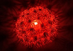 Red Star (Bohumil Boudník) Tags: crazytuesday red sony a7 alpha light dark night room abstract
