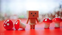 Red Danbo World - 7998 (✵ΨᗩSᗰIᘉᗴ HᗴᘉS✵93 000 000 THXS) Tags: red rouge roja macro bokeh danbo danboard toy miniature belgium europa aaa namuroise look photo friends be yasminehens interest eu fr party greatphotographers lanamuroise flickering challenge sony sonyrx10m3