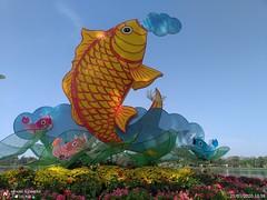 IMG_20200121_105859.jpg (bphone247) Tags: bphone bflickr camerabphone photo bfans vietnam t012020 lốixưa🗽 639c265afe96d9cb0173a6c9ec0dfd14 t012020639c265afe96d9cb0173a6c9ec0dfd14