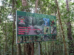 Nature Sign (mikecogh) Tags: colisuva fiji forest sign birds trees coatofarms error mistake trail spelling
