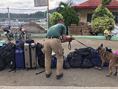 Drug check at El Nido (rob.brink) Tags: harbor harbour coron philippines city filipino asia