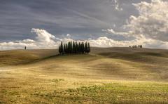 Tuscany19 #13 (Roberto Defilippi) Tags: 2020 62020 rodeos robertodefilippi tmpanelv5 tonalitymasks gobefilters tuscany italy landscape valdorcia