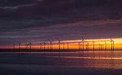 Just before sunrise (Jongejan) Tags: windmill energy nature sunset sky orange sun winter grevelingen bruinisse zeeland water outdoor outside