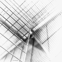 abstract window geometry (19Mauro64) Tags: martphotography monochrome abstract architecture arte artcity walkingtour window windowart windowfront windowslightandshadow geometriclines geometricforms geometrici graytones elements riflessifotografici urbangeometrics urbanabstraction industrial structure silverefex symmetric doppiriflessi doubleexposure freeform xpro3 vision view variierteelemente vetrateastratte vetrata bw bianconero newbuilding newarchitecture