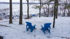 Winter, hiver - Parc du Bois-de-Coulonge, Québec, Canada  - 3397 (rivai56) Tags: winter hiver parcduboisdecoulonge québec canada 3397 invitation à contempler le fleuve saintlaurent glacé sur les chaises bleues contemplate frozen st lawrence river blue chairs