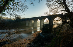 Forder Viaduct. (Go placidly amidst the noise and haste...) Tags: bridge forder viaduct railway dawn morning estuary tamar river trees contrast peaceful tidal