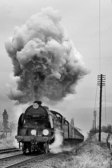 """Sir Lamiel"" produces a volcanic exhaust as it blasts past Woodthorpe with a passenger train (Iand49) Tags: transport railway railroad rail train passengertrain carriages sirlamiel kingarthur n15class maunsell southernrailway britishrailway southernregion woodthorpe leicestershire england greatcentralrailway rural destinationdiscs smokedeflectors telegraphpoles monochrome blackandwhite blast exhaust smoke clag trees countryside historic heritage evocative nostalgia preservation restored power speed motion outdoors"