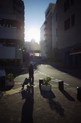 The sun and Us (ademilo) Tags: street streetphotography streetlight sky sunset sunlight sun sunshine shadows shadow skyscape city cityscape citylife contrast color backlight beauty beautiful tokyo town townscape japan colored