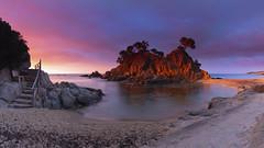 Stairs to Cap Roig (explore) (Rafael Díez) Tags: españa cataluña palamos girona paisaje seascape sunrise sol sun sea mar amanecer rafaeldíez filtro agua rocas rock panorámica escaleras arboles