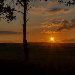 Abendsonne (berndtolksdorf1) Tags: deutschland thüringen landschaft landscape sonnenuntergang outdoor himmel sky lichtstimmung