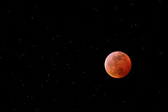 Lunar eclipse (billd_48) Tags: fl winter nature sky night astrophotography moon lunareclipse naples usa