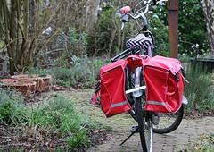 ROOD ROUGE RED ROT ROSSO ROJO VERMELHO (Anne-Miek Bibbe) Tags: rood rouge red rot rosso rojo vermelho crazytuesday happycrazytuesday canoneos70d annemiekbibbe bibbe nederland 2020 fiets bike garden tuin achtertuin winter