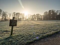 20200121-_1498014-HDR.jpg (colemanr20) Tags: parkland morning frosty winter nationaltrust walks walk woodland sheringhampark cold