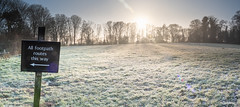20200121-_1498017-HDR-Pano.jpg (colemanr20) Tags: parkland morning frosty winter nationaltrust walks walk woodland sheringhampark cold