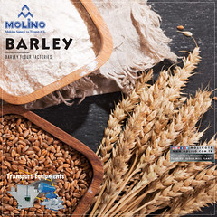 Barley Mills (molinosocial) Tags: turnkey turn key food processing plants complex foodcities foodfactories design machinery industry production wheat barley corn maize sorgum millet factory milling grinding granule grain producer molino engineering trade business
