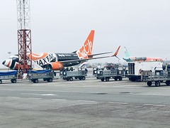 UR-SQE & A321 Windrose (Кевін Бієтри‎) Tags: boeing 737700 skyup airlines with shakhtar donetsk livery airbus a321 windrose kyiv boryspil kbp ukbb kyivboryspil shakhtardonetsk windroseairlines kevinbiétry spotterbietry airplane airport runway aircraft vehicle jet flight truck transport tarmac airliner car engine air airportterminal luggage bus outdoor transportation airline road airtravel transportationsystem plane