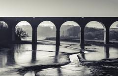 Forder Mono Morning. (Go placidly amidst the noise and haste...) Tags: bridge forder viaduct mono blackandwhite blackwhite cornwall dawn morning estuary mud ship houses mist clouds blackwhitepassionaward