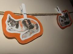 IMG_0741 Fluffy (belight7) Tags: shridhars cat art daughter uk
