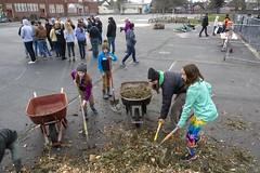 20200120__Vestal Learning Garden MLK Day of Service_22 (ppscomms) Tags: vestalschool mlk day service learning garden