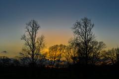 Nature-1109 (EB_Creation) Tags: nature naturallight natural 1680284eifedvr 1680mmf284evr 1680mm nikon nikkor nikkor1680mmf284evr walkinginnature walk outdoor outside amateur amazing nice scenic scenicsnotjustlandscapes landscape