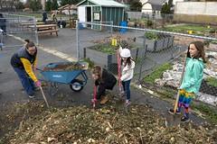 20200120__Vestal Learning Garden MLK Day of Service_21 (ppscomms) Tags: vestalschool mlk day service learning garden