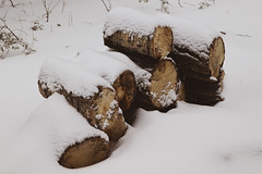 Wood Pile in the Snow (Savannah Carole) Tags: maine vacation camping snow winter nature rustic ice lake onawa cabin wood woodpile fire warm cold cozy