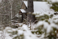 Cabin in the Snowy Woods (Savannah Carole) Tags: maine vacation camping snow winter nature rustic ice lake onawa cabin woods forest peaceful cozy snowing leaves foliage