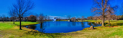Lovely winter morning in Texas! (Bombatron) Tags: winter morning texas lake pond park explore flickr fujifilm blue skies xt3 16mm wide angle panorama pano birds trees outdoors nature
