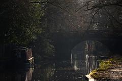 Basingstoke Canal Mytchett-Ash Vale 21 January 2020 003 (paul_appleyard) Tags: mytchettplacebridge thewho canal boat narrowboat mytchett basingstoke surrey january 2020 arch bridge sunlight trees winter