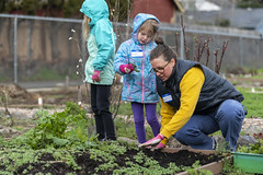 20200120__Vestal Learning Garden MLK Day of Service_10 (ppscomms) Tags: vestalschool mlk day service learning garden