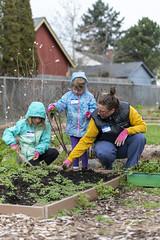 20200120__Vestal Learning Garden MLK Day of Service_9 (ppscomms) Tags: vestalschool mlk day service learning garden