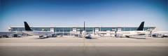 N MID 002 (Leo2C-MID) Tags: mérida yucatán aeropuerto hht