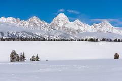 Grand Tetons (Amy Hudechek Photography) Tags: snow winter wyoming grandtetonnationalpark cold amyhudechek nature landscape freezing mountains