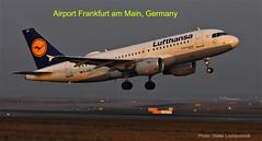 Airport Frankfurt am Main in Germany - Just started in to the Air on the Starbahn-West (DieterLo1) Tags: lufthansa flughafen startbahnwest aircraft aviation luftfahrt lufttransport plane germany hessen