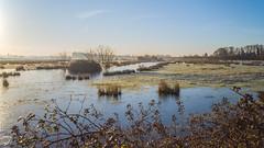 Flooded & Frozen Fields (Ian Fletcher 99) Tags: uk sunrise sandwich kent water field ice grass