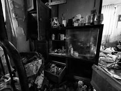 Cabinet Meeting (Feldore) Tags: hong kong ma wan abandoned house village chinese huawei p30 pro derelict feldore mchugh empty mess furniture