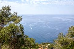 Sailing alone (Micheo) Tags: spain marmediterráneo agua costa sailing navegando sea water soledad parajenaturaldelosacantiladosdemarocerrogordo granada españa navegar barco boat