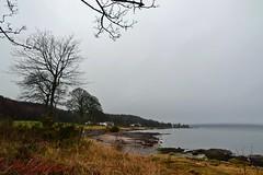 (Zak355) Tags: rothesay bute isleofbute scotland scottish ascog beach shore