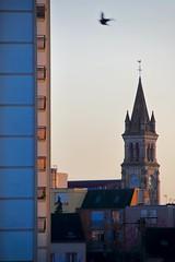 Envol vers le Gratte-Ciel ! (Tonton Gilles) Tags: alençon normandie église saintpierre montsort quartier de tour du champ perrier place oiseau filé flou mouvement paysage urbain crépuscule coucher soleil