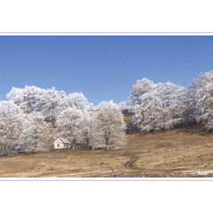 Frost (horstmall) Tags: schieshäusle wachter donnstetten saele bäume trees arbres hoarfrost raureif verglas haus häuschen häusle cottage schwäbischealb jurasouabe swabianalps römerstein bluesky blauerhimmel cielbleu horstmall landschaft landscape paysage winter hiver