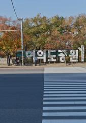 Seoul November 2019 001