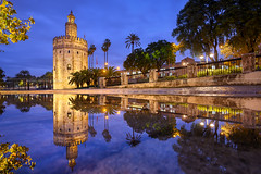 Torre del Oro (Michael Abid) Tags: seville sevilla spain andalusia landmark torredeloro torre oro night tower gold famous architecture blue building tourism travel spanish reflection water