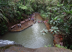 Looking Down on Rock Pool (mikecogh) Tags: colisuva fiji pool natural forest rock waterfall paradise