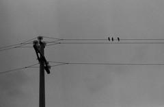 What else? (mauro.a.cauli) Tags: blackandwhite minolta filmphotography homedeveloping life friends minimal