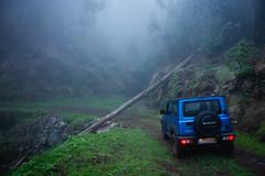 (RicardoPestana2012) Tags: jeditricks mad madeiraisland suzukijimny suzuki fog forest woodland