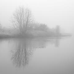 Photo of B&W #4 - Serenity