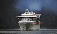 Golden Princess. (Bernard Spragg) Tags: ships cruiseships lumix vessels boats travel milfordsound bow sea goldenprincess